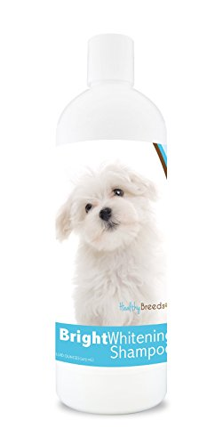 Bright Whitening Dog Shampoo