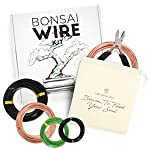 Leaves and soul tree training wire kit - 5 rolls (160ft) aluminum alloy bonsai plant training wire | wire cutter… 12 ✅ flexible but sturdy - our bonsai tree training wires are made of top-quality aluminum alloy, which is strong but easy to mold. They stand strong against rust and bends easily without breaking. ✅ meets different needs - this plant wire set has different sizes of training wires including 1. 0mm, 1. 5mm, 2. 0mm, 2. 5mm, and 3. 0mm wires, all with a length of 32 feet. Total of 160 feet of wire for all of your projects. They can also be used for handmade craft making, sculpture projects and jewelry making. ✅ cuts easily - our gardening kit comes with a high quality traditional bonsai wire cutter. This tool can cut the thickest aluminum wire effortlessly.