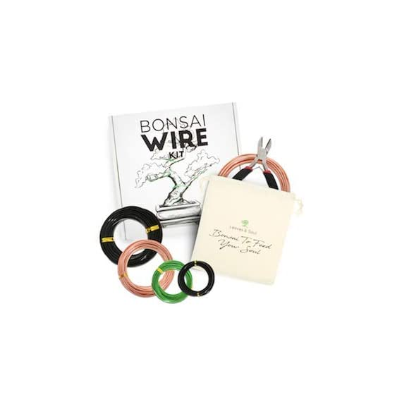 Leaves and soul tree training wire kit - 5 rolls (160ft) aluminum alloy bonsai plant training wire | wire cutter… 4 ✅ flexible but sturdy - our bonsai tree training wires are made of top-quality aluminum alloy, which is strong but easy to mold. They stand strong against rust and bends easily without breaking. ✅ meets different needs - this plant wire set has different sizes of training wires including 1. 0mm, 1. 5mm, 2. 0mm, 2. 5mm, and 3. 0mm wires, all with a length of 32 feet. Total of 160 feet of wire for all of your projects. They can also be used for handmade craft making, sculpture projects and jewelry making. ✅ cuts easily - our gardening kit comes with a high quality traditional bonsai wire cutter. This tool can cut the thickest aluminum wire effortlessly.