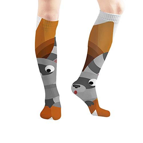 Dos bonitos mapaches, calcetines de compresión con diseño de animales huecos, vida silvestre adorables naturaleza, deportivos, calcetines de tubo largo de 50 cm