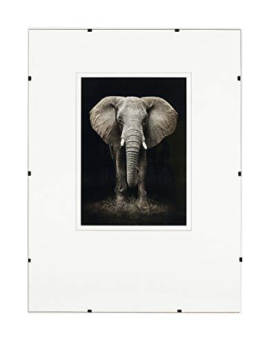 Postergaleria Bilderrahmen Rahmenlos | 60x80cm | Klar Plexiglas | mit Clips | Bildhalter für Fotos Poster | Plakatrahmen | viele Größen | gut für Wohnzimmer, Esszimmer, Küche