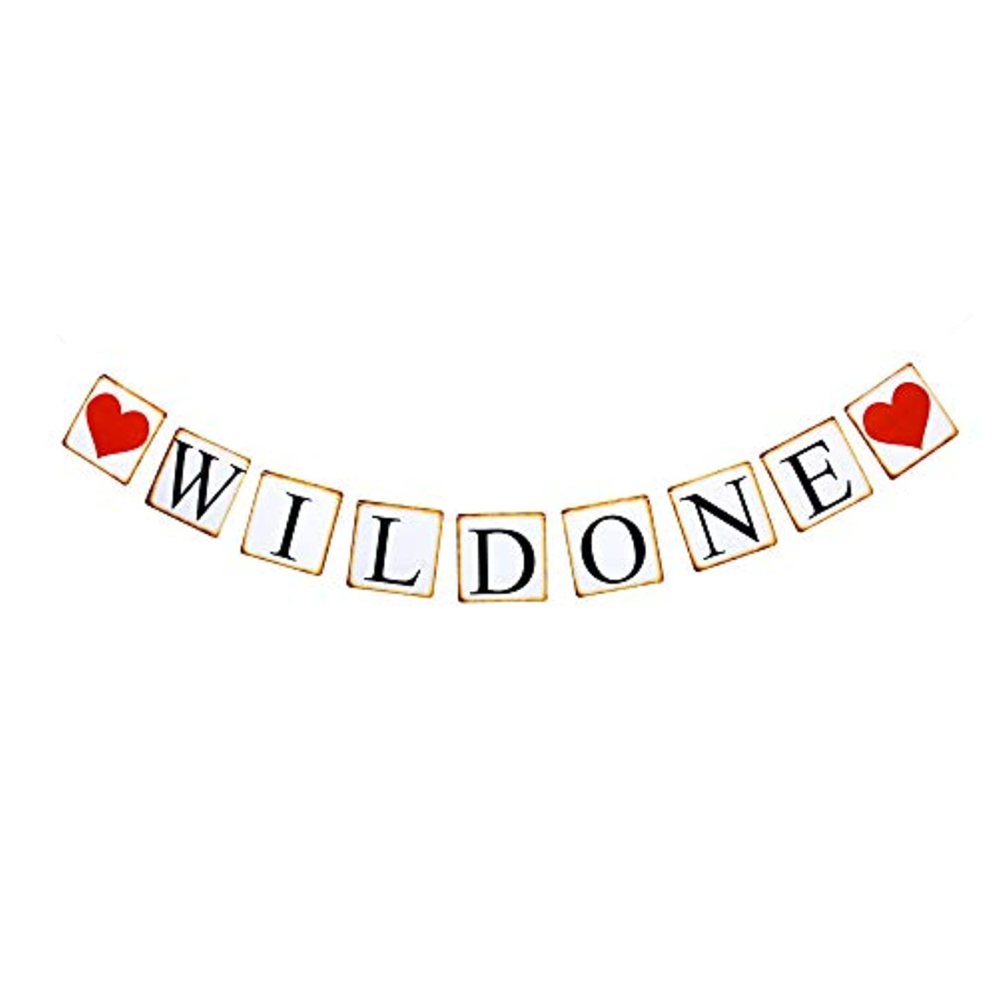 Wild One Banner, Baby's First Birthday Party Decorations Paper Sign Wild Theme Party Decors Photoprops