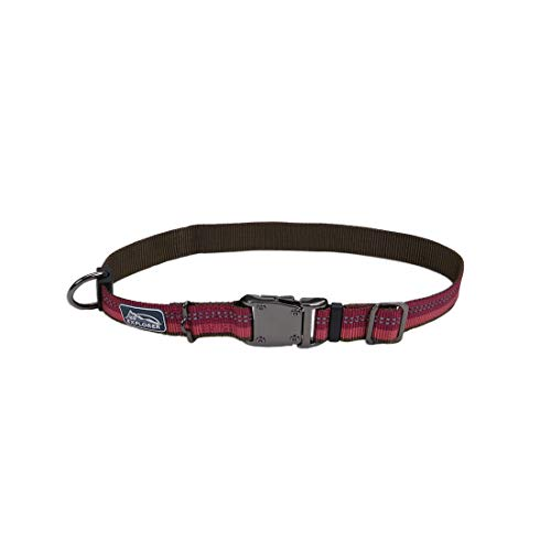 Coastal - K-9 Explorer - Reflective Adjustable Dog Collar, Berry, 1' x 12'-18'