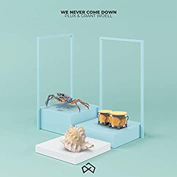 We Never Come Down