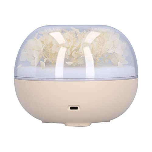 Alvinlite Diffusore di Oli Essenziali, Mini diffusore di aromi Alimentato Tramite USB con umidificatore ad ultrasuoni per Olio Essenziale da Tavolo Luminoso