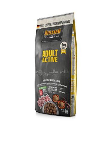 Belcando Adult Active Hundefutter | Trockenfutter für aktive Hunde & Sporthunde | Alleinfuttermittel für ausgewachsene Hunde ab 1 Jahr (12,5 kg)