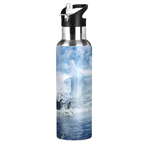 Blueangle Antarctica Penguine Stainless Steel Water Bottle   Vacuum-Insulated Water Bottle   Sports Water Bottle for Camping Workouts Gym and Outdoor Activity, 22 Oz
