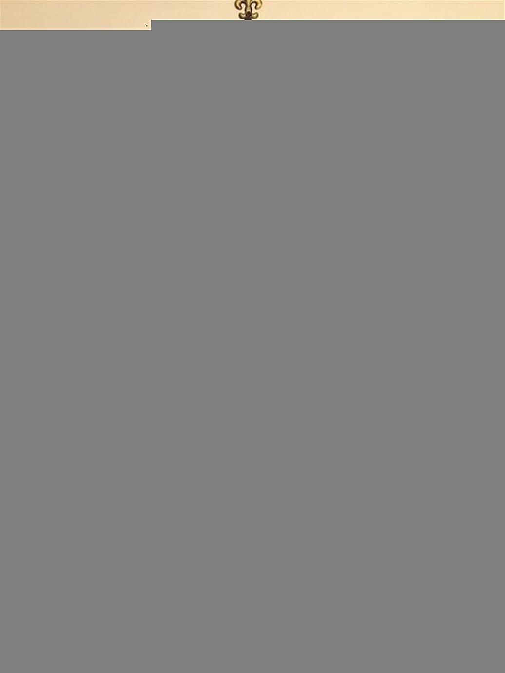 平衡口述作家Women Men Unisex 3D Print Galaxy Animal hipster Tee Shirt(black)