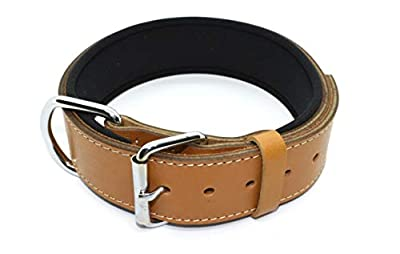 "Tuberk Soft Padded, Genuine Leather, Luxury Durable and Strong Adjustable Dog Collar for Walking Training (L (20.5"" - 23.5""), Brown-Tan)"