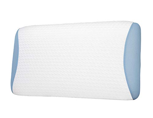 Best 2 Rest Arcticwave Latex Foam Pillow Sleep Aid – Double Ice Always Cold Pillow for Side Sleeping, Queen Size