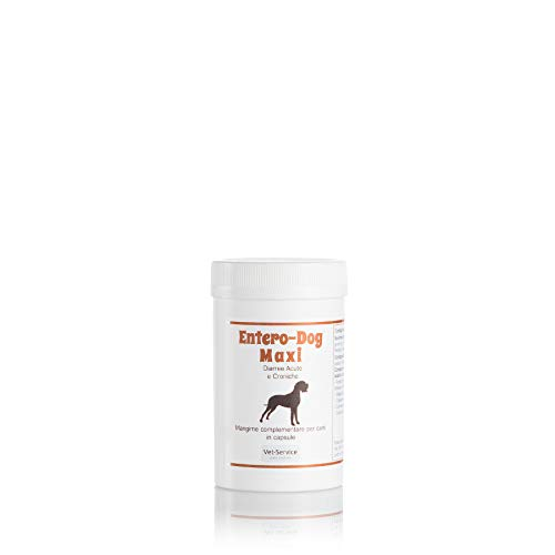 Migliori antidiarroico per cani: Recensione, Consigli e Prezzo