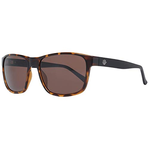 Tom Ford 148 Miguel - Gafas de sol (talla 60-15), color negro