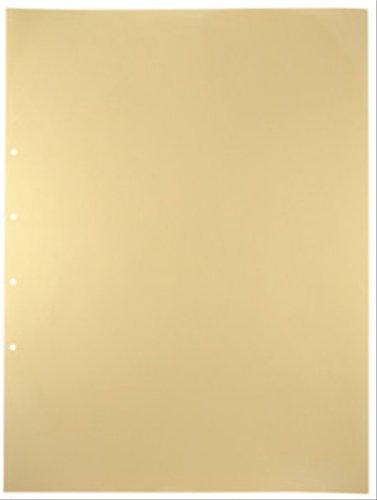 キングジム デラックス透明ポケット  107D A2S