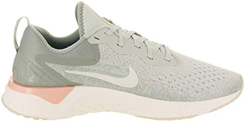Nike Women's Low-Top Sneakers (Silver/Sail Mica Green, 10 B US)