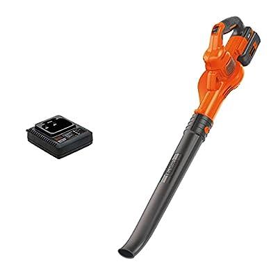 BLACK+DECKER (LSW40C) 40V Max Cordless Sweeper