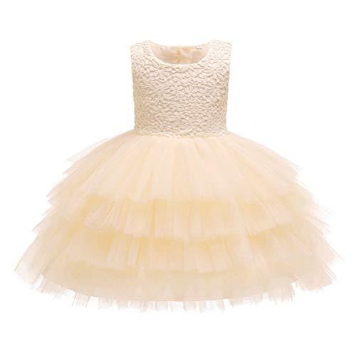 Zhhlinyuan Bébé Filles Robe de Princesse Fleur Dentelle Tutu Jupe sans Manches Fête d'anniversaire Robes - 0-24 Mois Robe de Baptême Enfants Pageant Robe de Bal