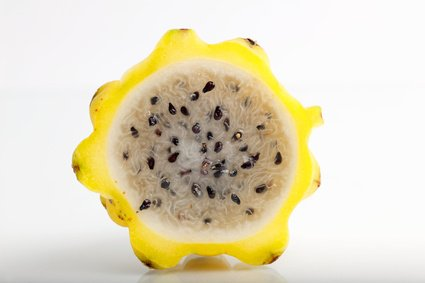 Pitahaya Drachenfrucht gelb Hylocereus megalanthus 5 Samen