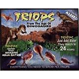 50 Eggs of Triops Longicaudatus (Tadpole Shrimp) Triassic Dinosaur Living Fossil