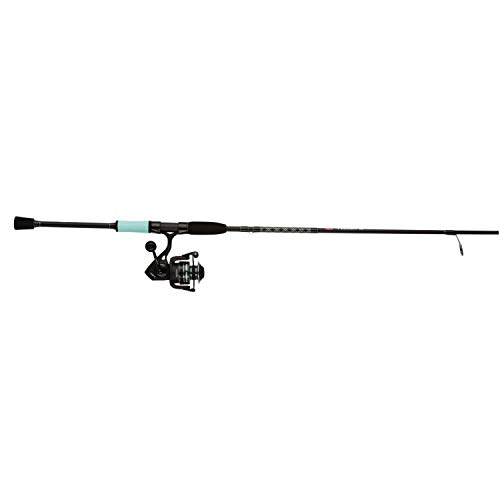 Penn Fierce III LE Spinning Reel and Fishing Rod Combo