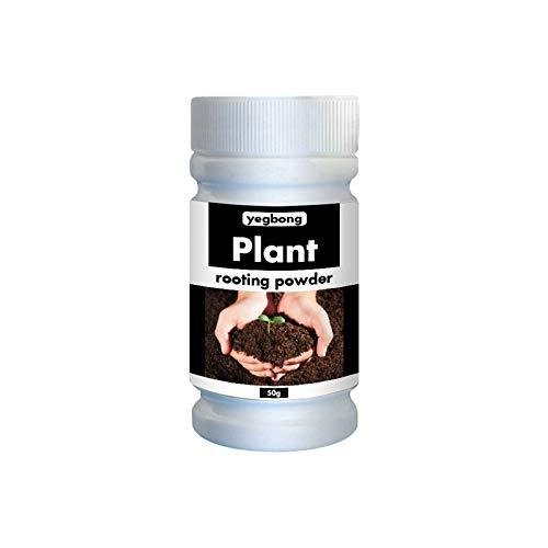 Cerlemi Wurzel Gel Wurzelgelhormon für Stecklinge Wurzelhormon Schnelles Wurzelpulver Für Pflanzen Bewurzelungspulver 3,5 Unzen für professionelle und Heimzüchter 2PCS