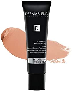 Blurring Mousee Camo Oil Free Foundation SPF 25 (Medium Coverage) - #45C Clay