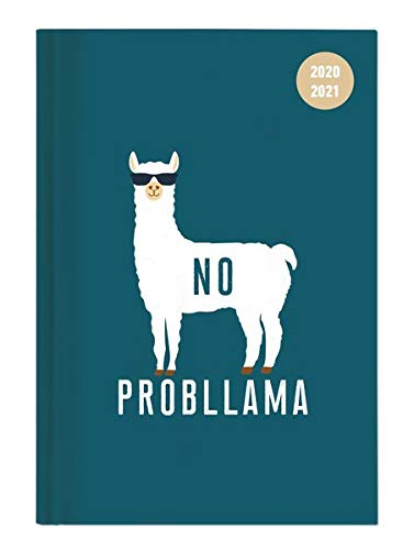 Collegetimer Llama 2020/2021 - Schüler-Kalender A5 (15x21 cm) - Lama - Day By Day - 352 Seiten - Terminplaner - Notizbuch - Alpha Edition (Collegetimer A5 Daily)