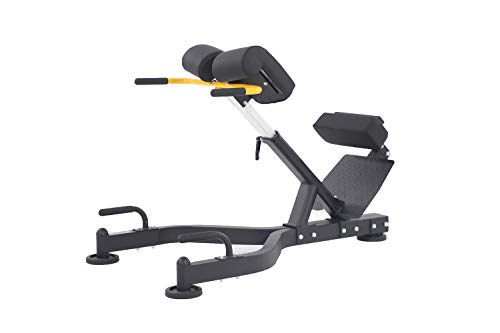 ALTAS Strength AL-3037 Roman Adjustable Chair-Light Commercial Fitness Equipment Exercise Strength Machine
