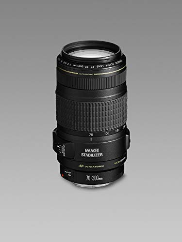 Canon EF 70-300mm f/4-5.6 IS USM - Objetivo para Canon (Distancia Focal 70-300mm, Apertura f/4-45, Zoom óptico 4.3X,estabilizador, diámetro: 58mm) Negro (Reacondicionado)