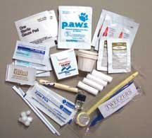 Emergency Dental Kit by Magellen's