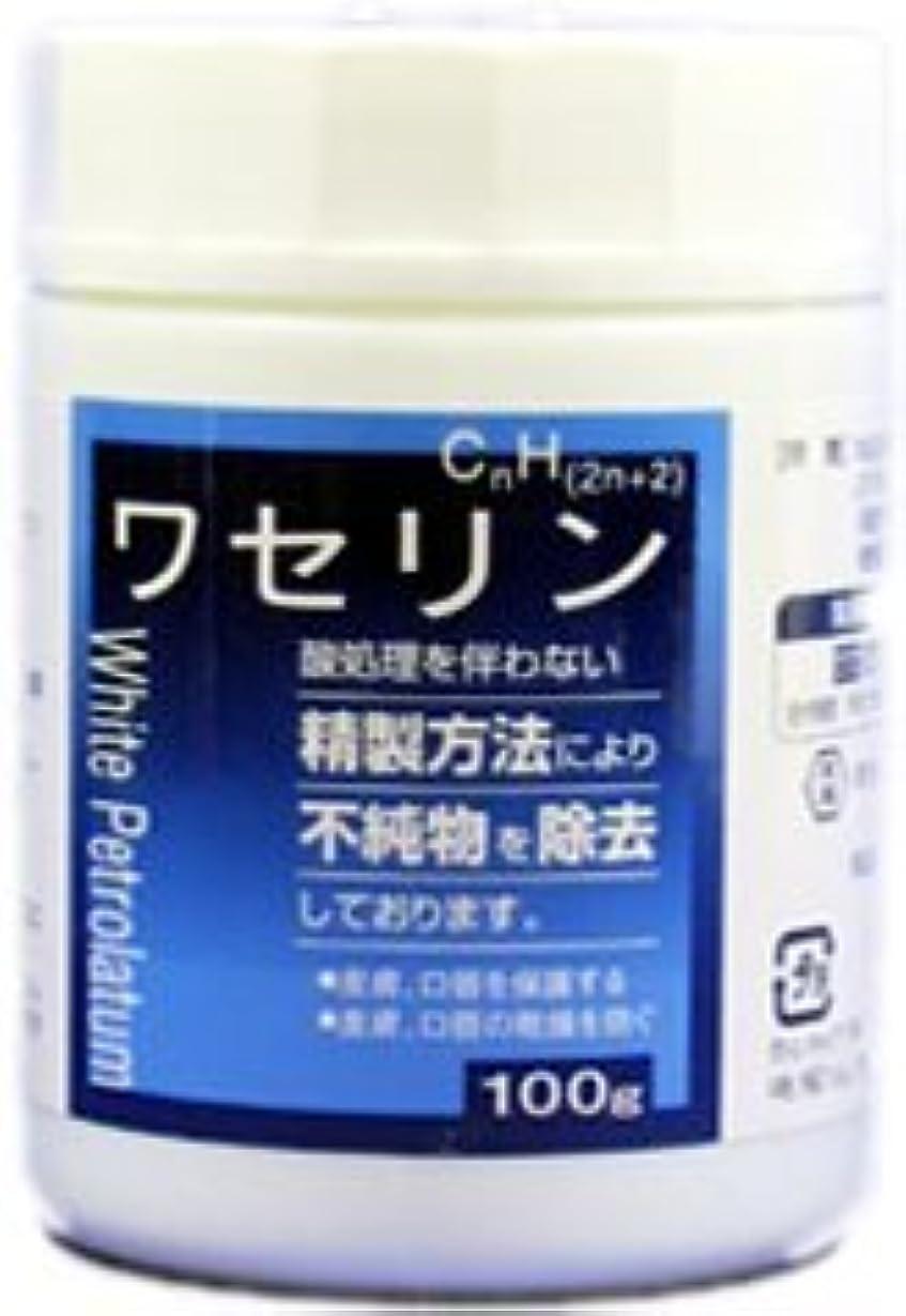 家庭登場一貫した大洋ワセリンHG 100g×(12セット)