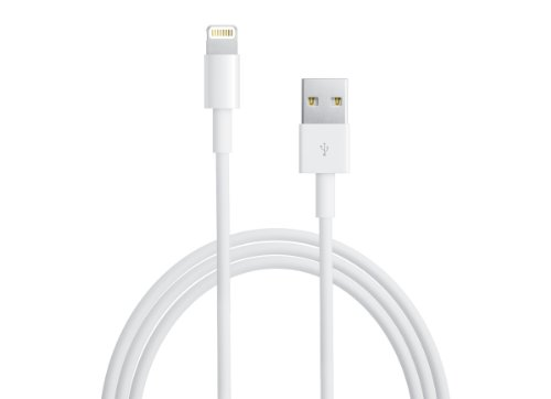 iPhone5 / iPodtouch5 / iPodnano7対応 Lightning USBケーブル バルク品