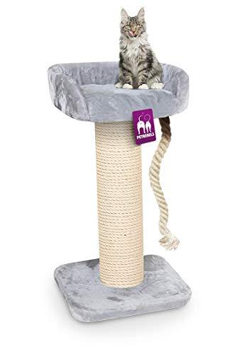 Petrebels Kratzbaum Maine Coon 100 Royal Grey, Extrem Stabiler Kratzbaum XXL für große Katzenrassen, auch für Maine Coon, Norwegische Waldkatzen oder Ragdolls, 100 cm, Farbe Grau, Hellgrau