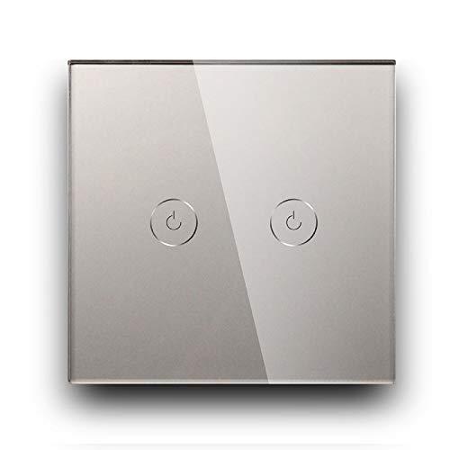 BSEED interruptor táctil de pared-2 Gang 2 Vías interruptor luz pared Gris,Templado Interruptor de luz de pared de vidrio con luz indicadora