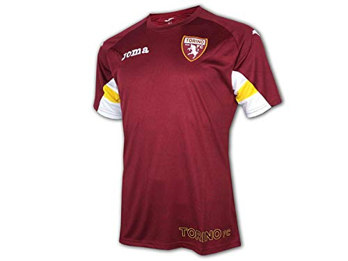 Joma 2019-2020 Torino Training Football Soccer T-Shirt Maglia (Burgundy)