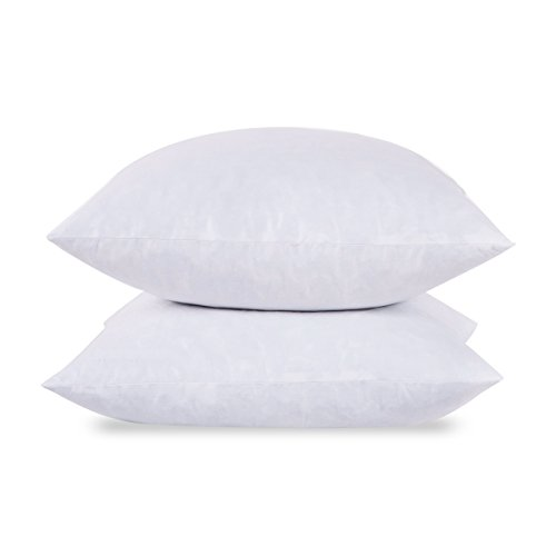 puredown 18X18-95% Feather 5% Down Square Pillow Insert-Pack of 2