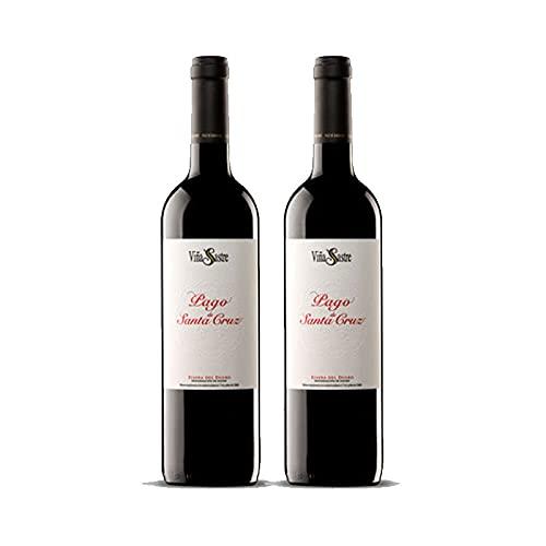 Vino Tinto Viña Sastre Pago de Santa Cruz de 75 cl - D.O. Ribera del Duero - Bodegas Viña Sastre (Pack de 2 botellas)