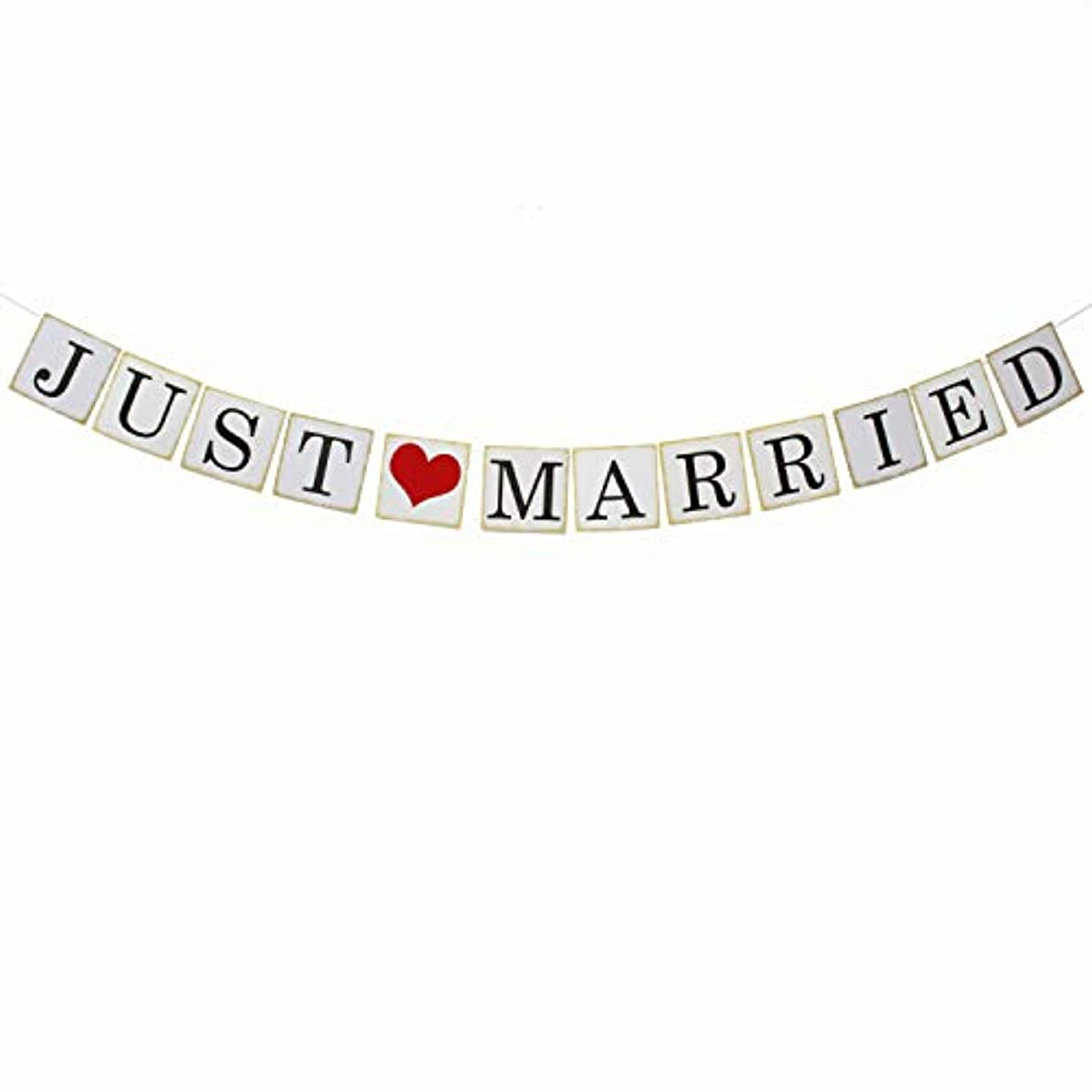 Just Married Wedding Banner - Vow Renewal Wedding Party - Bachelorete Engagement Car Décor - Bridal Shower Photo Props Hanging Decoration