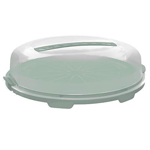 Rotho Fresh Flache Tortenglocke, Kunststoff (PP) BPA-frei, türkis/transparent, 34.5 cm