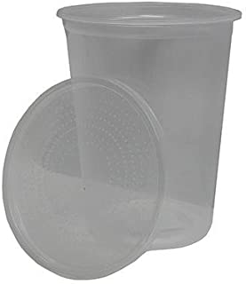 Josh's Frogs Placon Insect Cup with Lid 32oz
