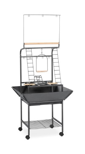 Prevue Pet Products Small Parrot Playstand 3181 Black Hammertone, 17.625-Inch by 16-1/2-Inch by 59-Inch