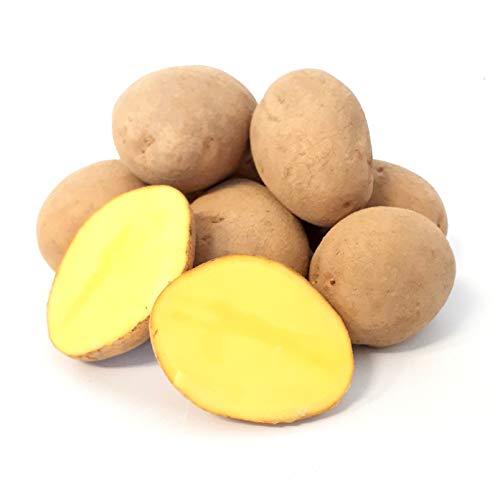 Kartoffel Afra mehlige Kartoffeln 1-25 Kg deutsche Speisekartoffel perfekt für Kartoffelsuppe, Püree, Gnocchi, Knödel, Kroketten, Ofenkartoffeln Aufläufe Salzkartoffeln auch zum Grillen geeignet (8)