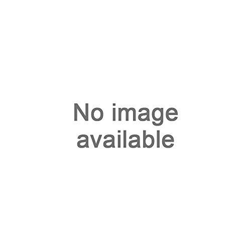 Scrape A Round Magic Cone-Shaped Eiskratzer - Eisschaber für Autos langlebiger und Stabiler Profi Eisschaber Windschutzscheibenkratzer kratzt mühelos Frost und Eis von Frontscheiben (Blau)