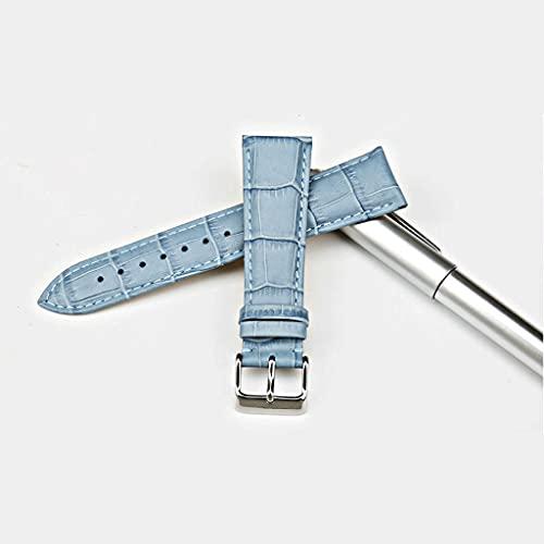 YSMLL Correas de reloj de moda Correa de reloj de cuero genuino rosa 12mm-22mm para mujer Correa de reloj para pulsera de reloj (Color : Blue, Size : 18mm)
