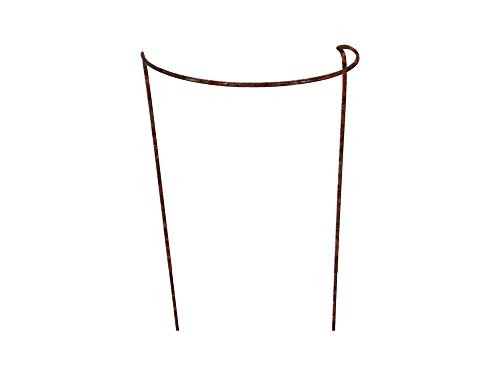 Rusty Bow Plant Supports for Peonies, Hydrangea, Roses, etc - Strong Metal Garden Supports - Interlinking to make rows, circles, cloverleaves, etc (Extra Large (100cm Tall x 44cm Wide) Pack of 4)