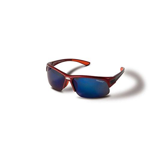 Polarisationsbrille Poli Brille 009