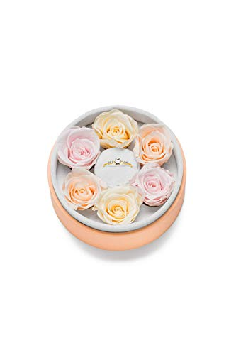 FAYE Clemence Ring Rosebox Round 18K Gold Plated 52