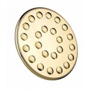 Learn More About Phylrich K835_065 - 10 Inch, 24 Jet Shower Head