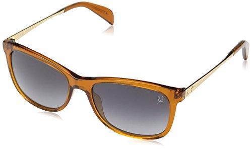 TOUS Damen STO918-5406BC Sonnenbrille, Braun (Transparente Warm Brown), 54