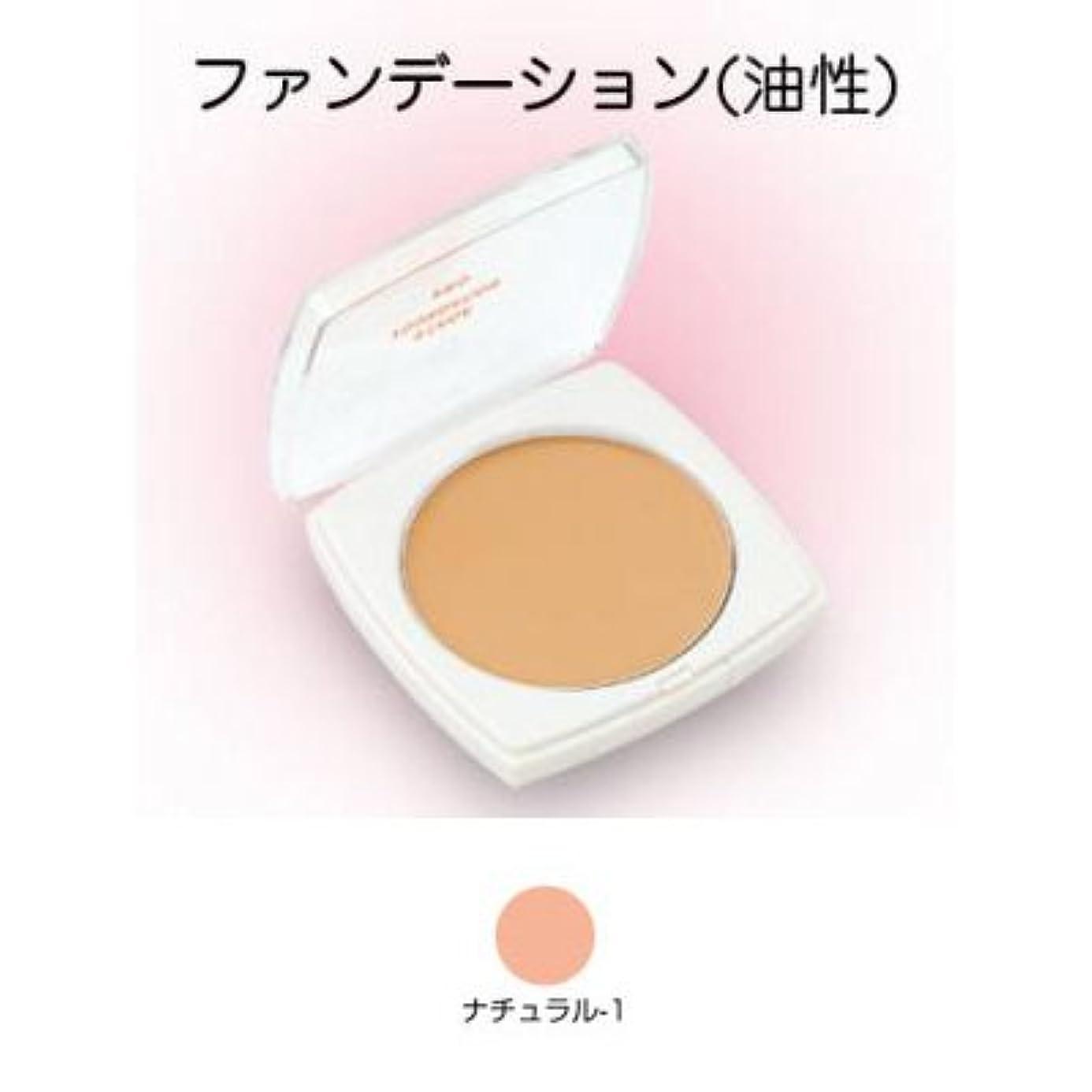 櫛区別する泣くステージファンデーション プロ 13g ナチュラル-1 【三善】
