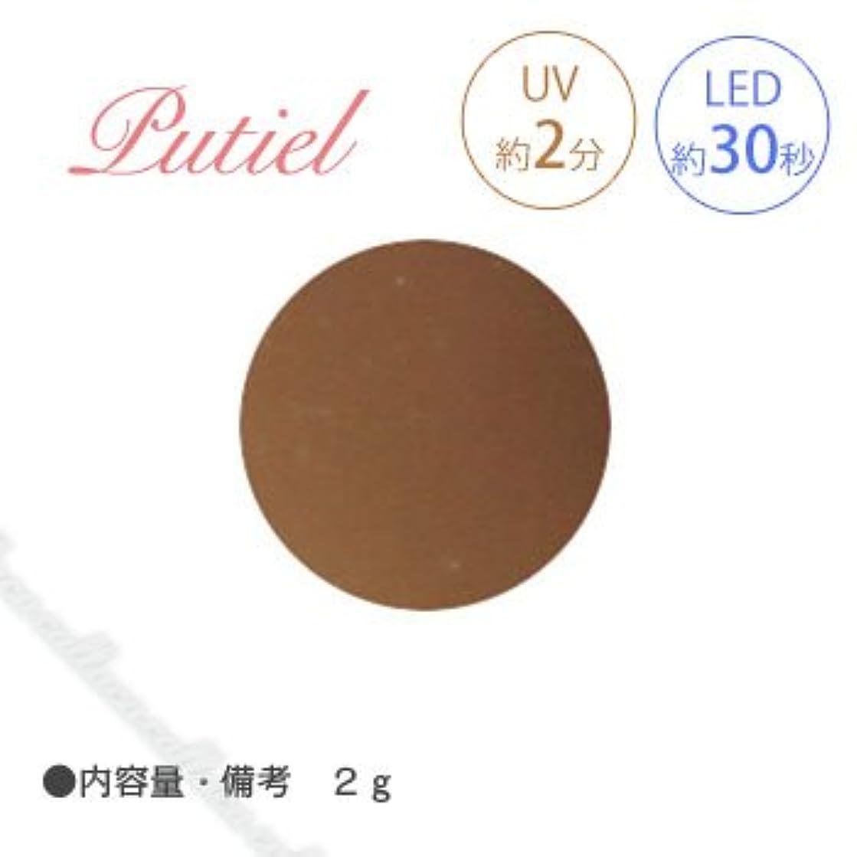 魅力的融合土器Putiel プティール カラージェル 508 ドッグ 2g
